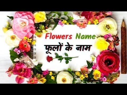 Flowers Name English With Hindi Youtube