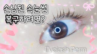[케라틴펌]찌글찌글한 속눈썹 복구시키는 속눈썹펌/Eye…