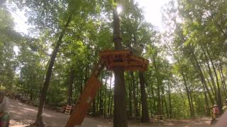 Treetop Trekking Brampton with Real Man Travels