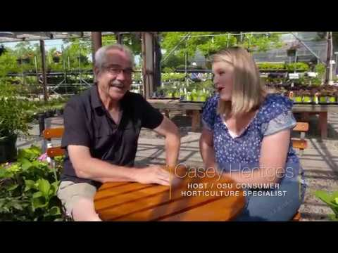 Plants for the Shade with Paul James