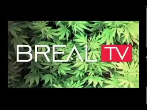 Neptoon/TheFriedMan Scratch Video Put together For  BReal.TVs' Dr. Greenthumb Show. Aired 5/28/2014