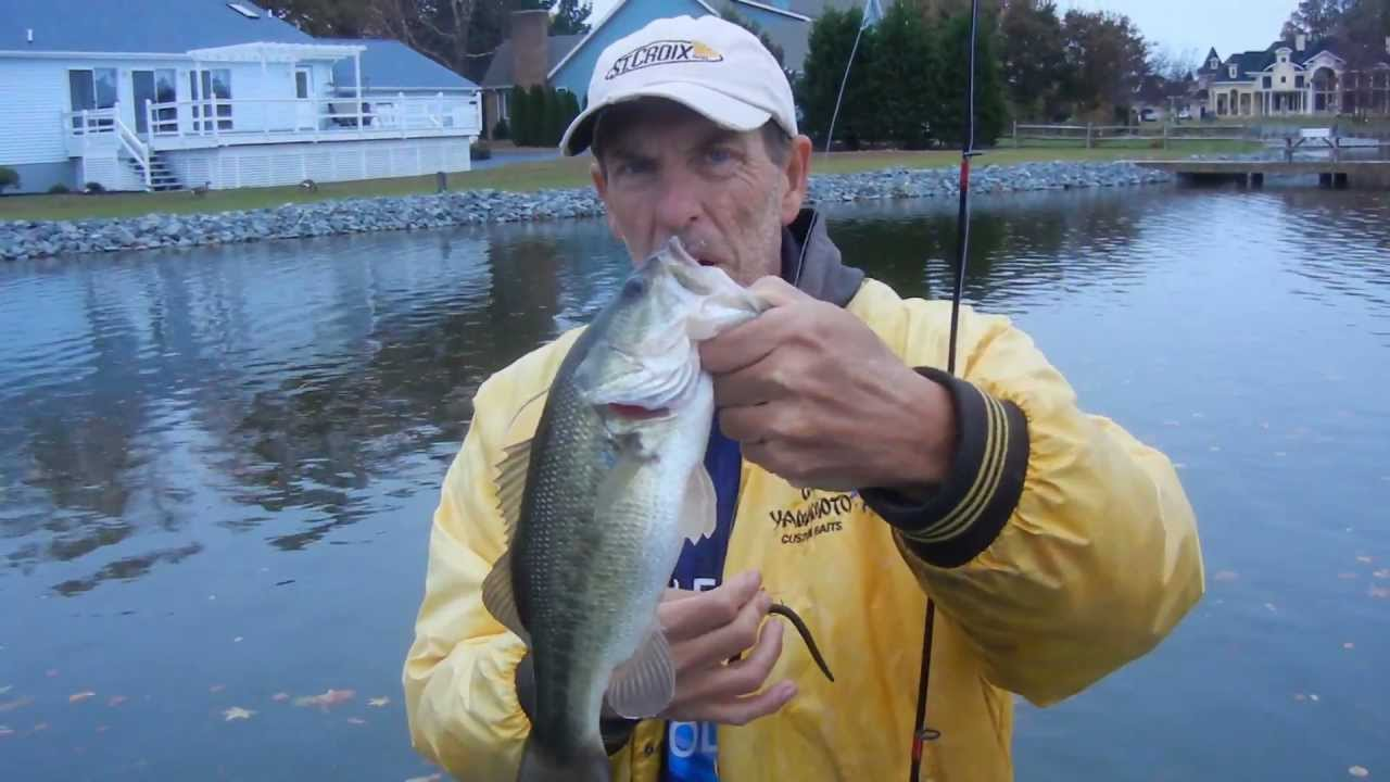 Winter Bass Tips By The Bass Youtube