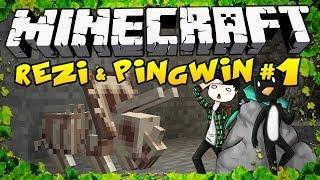 Rezi & Pingwin Adventures!