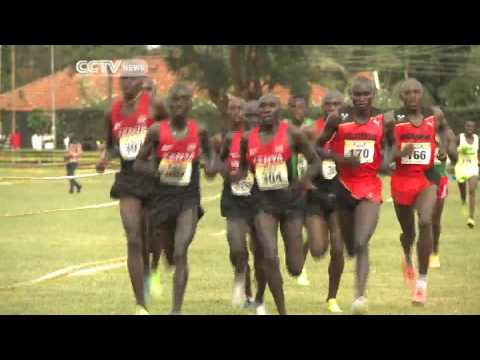 Kenya Wins All Titles on Offer at Africa Cross Country Championships