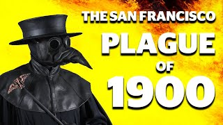 The San Francisco plague of 1900  |  Bubonic plague