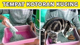 Cara membuat tempat kotoran kucing dan melatihnya agar buang air pada tempatnya, tutorial wow sama seperti manusia, juga butuh yang s...