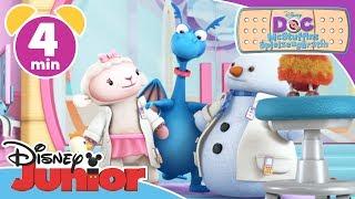 Chaos auf der Tierstation - Doc McStuffins | Disney Junior Kurzgeschichten
