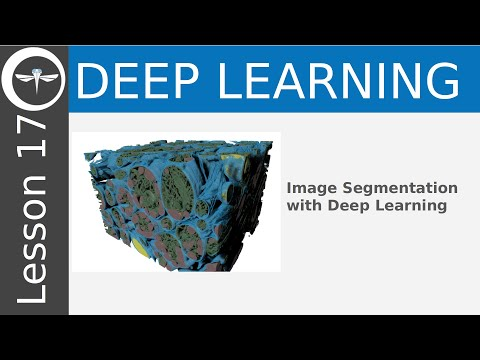 Dragonfly Daily 17 Image Segmentation With Deep Learning In Dragonfly (2020)