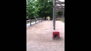 5/22/15 turtle back zoo pony ride