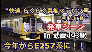 "E257系(NB-12編成) ""快速 らくらく青梅マラソン号 河辺行き""電車 武蔵小杉駅を発車する 2019/02/17"