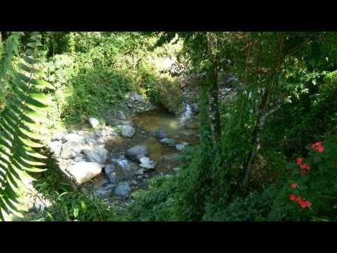 Dominican Republic Real Estate Mountain Land in Jarabacoa! Unique Caribbean Property