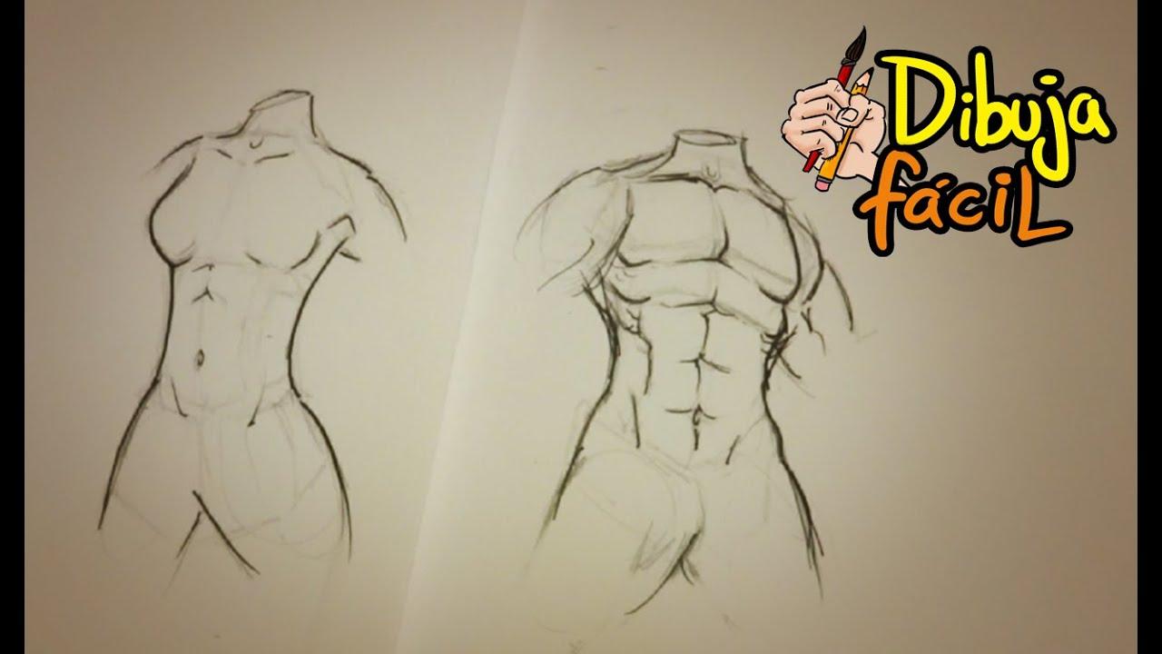 Como dibujar torso (hombre y mujer) | How to draw Torso (man & woman ...
