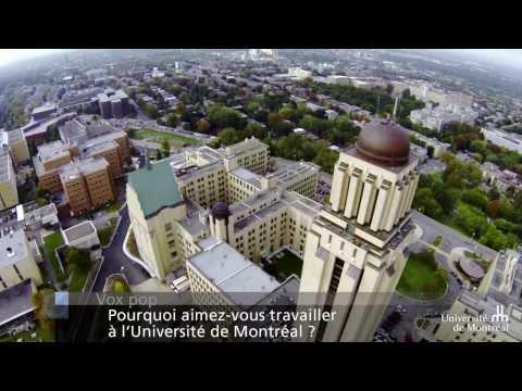 Vox pop : pourquoi aimez-vous travailler à l'Université de Montréal ?