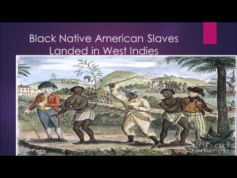 native americans in slavery To increase their slavery profits, some europeans began selling native americans into slavery in the caribbean between 1675 and 1715, thirty-to fifty-thousand native american slaves (this is a conservative estimate) were sold from the southern colonies into slavery in the caribbean.
