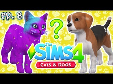 2 New YouTubers Added?! - The Sims 4: Raising YouTubers PETS - Ep 8 (Cats & Dogs)