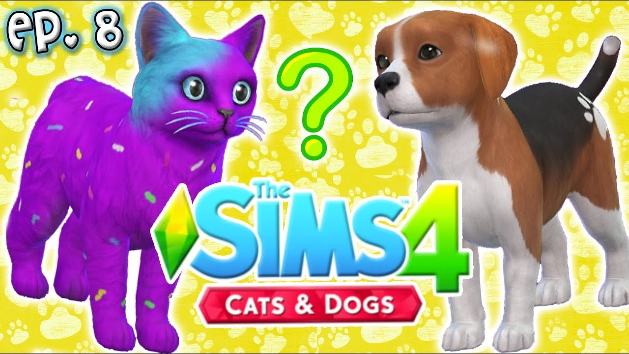 Yammy Sims  Cats And Dogs