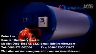 Wns Horizontal Three Pass Oil Or Gas Steam Boilers-romiter Machinery