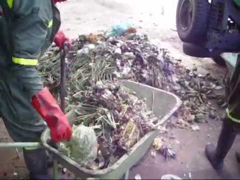 Our Organic Waste Recycling Process: The making of JV CompSoil