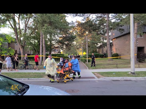 Four shot, including 1-year-old, at Toronto birthday party