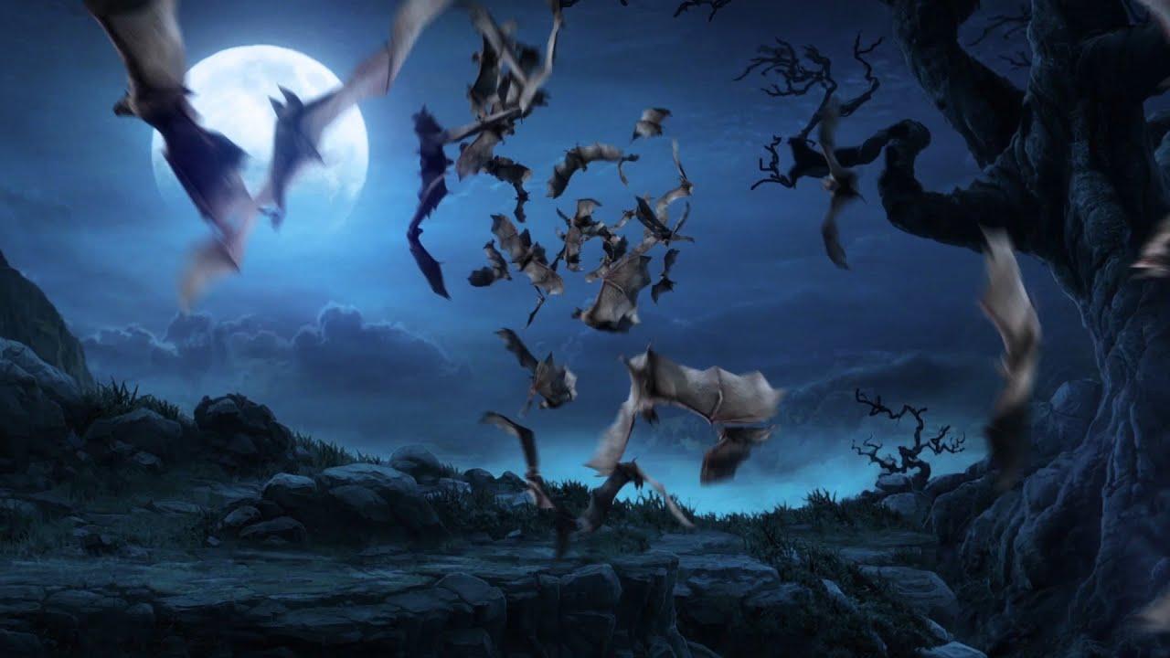 Fall Graveyard Cemetery Wallpaper Green Screen Animals Flock Of Bats Footage Pixelboom