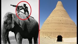 Crazy Things The Ancient Persians Did