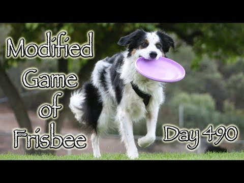 Day 490: Modified Game of Frisbee