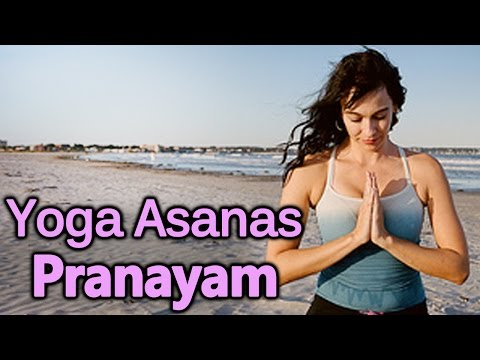 Pranayam & Yoga Asanas - Yoga For Beginners