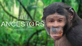 サルから進化するゲームやる