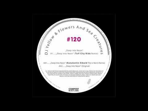 DJ Yellow & Flowers And Sea Creatures - Deep Into Neon (Original)
