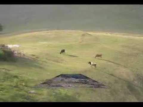Arpaderesi Köyü Youtube