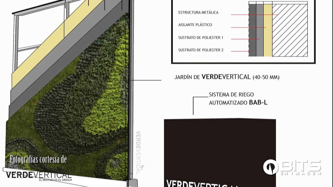 Muros verdes jard nes verticales youtube for Muros y fachadas verdes jardines verticales