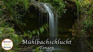 Mühlbachschlucht Tengen - Baden-Württemberg - Deutschland - Schöne Orte - Natur / Wandern