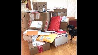 Crusoe & Oakley Open Christmas Gifts!