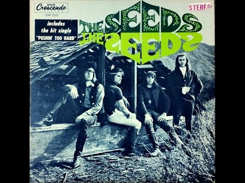 THE SEEDS -The Seeds (Full album) (Vinyl)