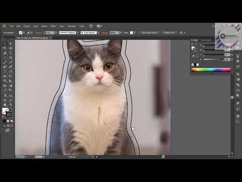 Adobe Illustrator CS6 - Cắt pét bán trên AMAZON