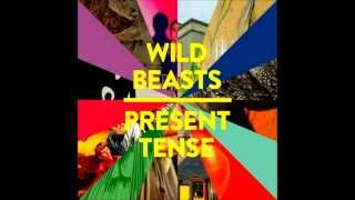 Wild Beasts - Past Perfect