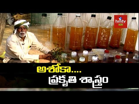 Natural Farming | Farmer Ashok Kumar About Organic Fertilizers | hmtv Agri