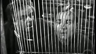 Der kaukasische Kreidekreis (1958)