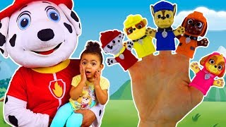 Finger Family | Learn Characters with the Paw Patrol Finger Family Nursery Rhymes Song with Leah