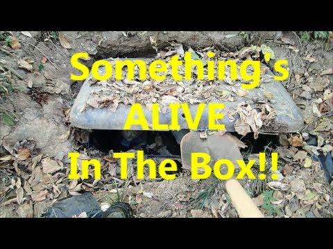 Creepy Homeless Camp With a Buried Box.