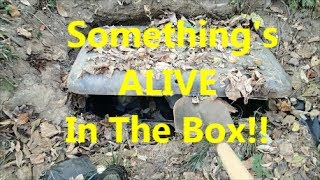 Creepy Homeless Camp With a Buried Box. thumbnail