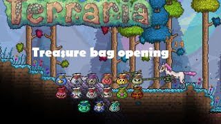 Terraria 1.3 TREASURE BAG OPENING #3