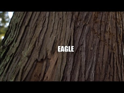 Gisto Ft. Emotionz - Eagle (Official Video)