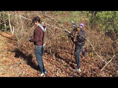 Volunteering with Lynes Woods Sanctuary - Victory Team (15) [THEATRICAL CUT]