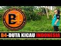 Keluarga Besar Kicau Mania Indonesia B Bekasi  Mp3 - Mp4 Download