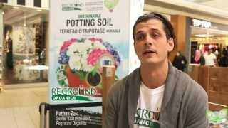 Eglinton Square   Grounds to Garden Celebration 2015