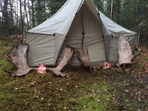 2016 Alaskan Moose Hunt