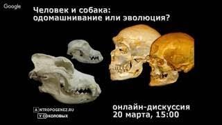 Человек и собака: одомашнивание или эволюция (2017)