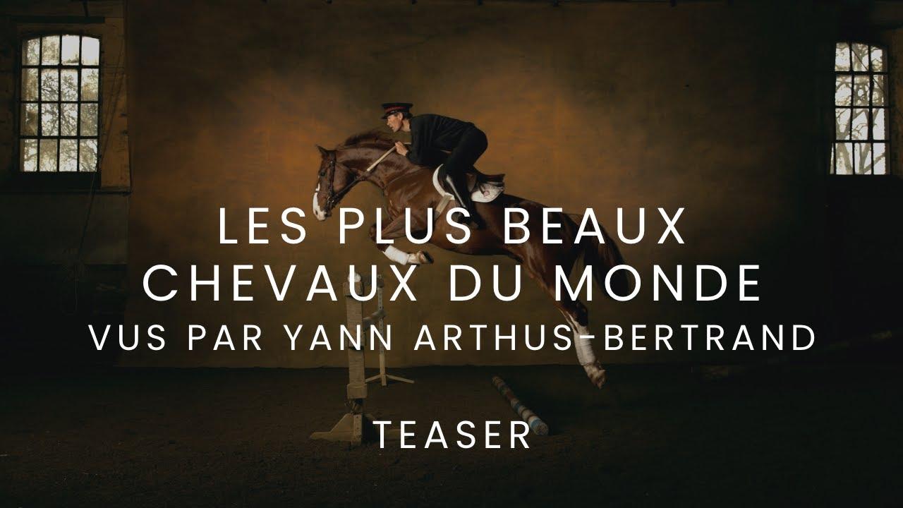 Les plus beaux chevaux du monde vus par yann arthus - Les plus beaux plafonds du monde ...