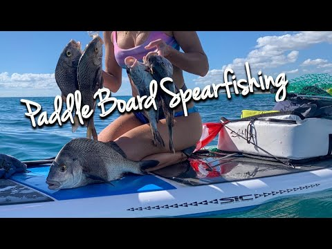 Paddle Board Spearfishing